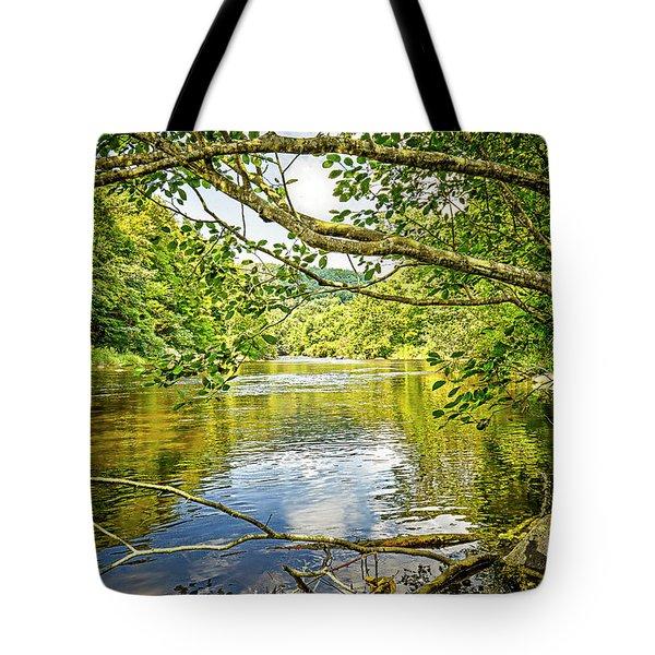 Canal Pool Tote Bag