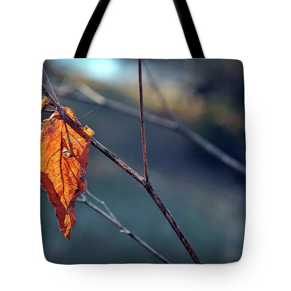 Captured In Light Tote Bag