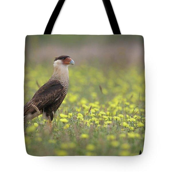 Caracara In Spring Tote Bag