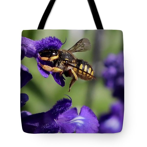 Carder Bee On Salvia Tote Bag