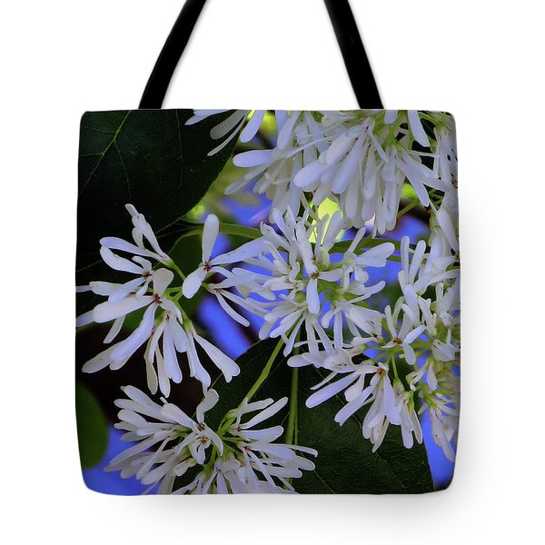 Carly's Tree - The Delicate Grow Strong Tote Bag