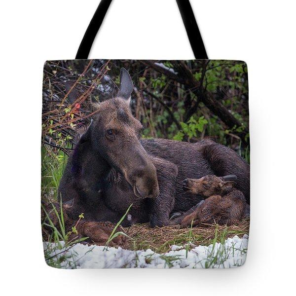 Casey's Gift  Tote Bag