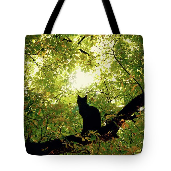Cat On A Tree Tote Bag