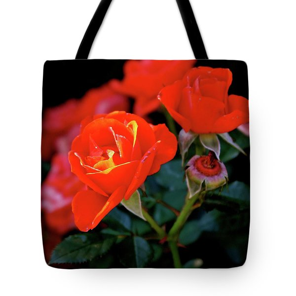 Catch The Morning Tote Bag