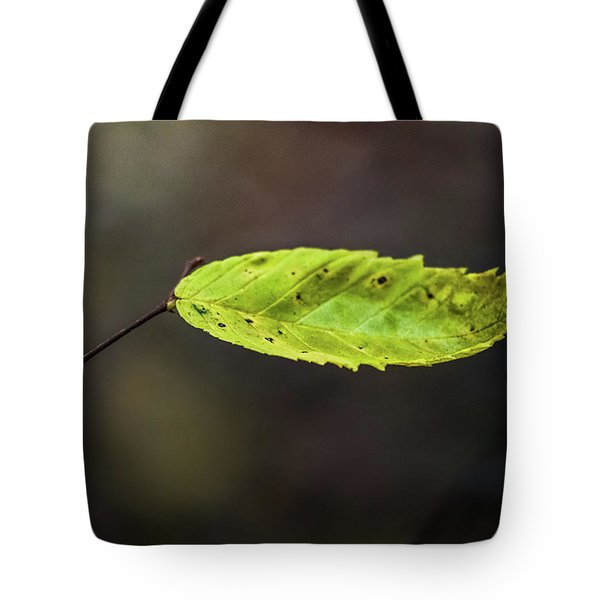 Tote Bag featuring the photograph Catching Raindrops  by Michael Arend