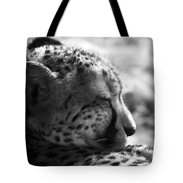 Tote Bag featuring the photograph Catnap by Whitney Goodey