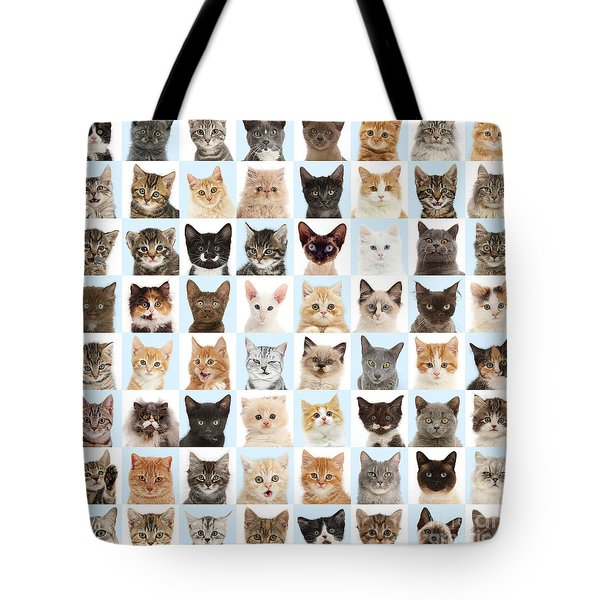 Tote Bag featuring the photograph Cats Or Chess by Warren Photographic
