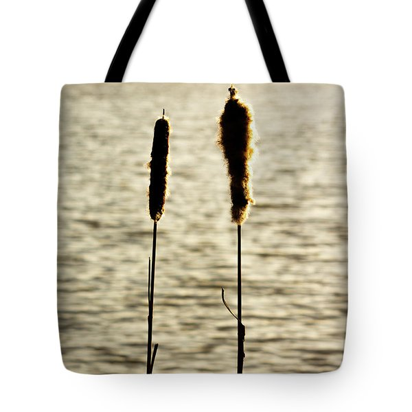 Cattails In The Sun Tote Bag