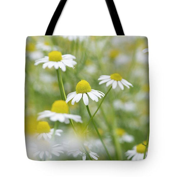 Tote Bag featuring the photograph Chamomile Flowers by Tim Gainey
