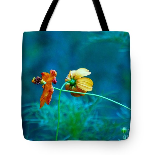 Tote Bag featuring the photograph Chance Meeting by Rosanne Licciardi