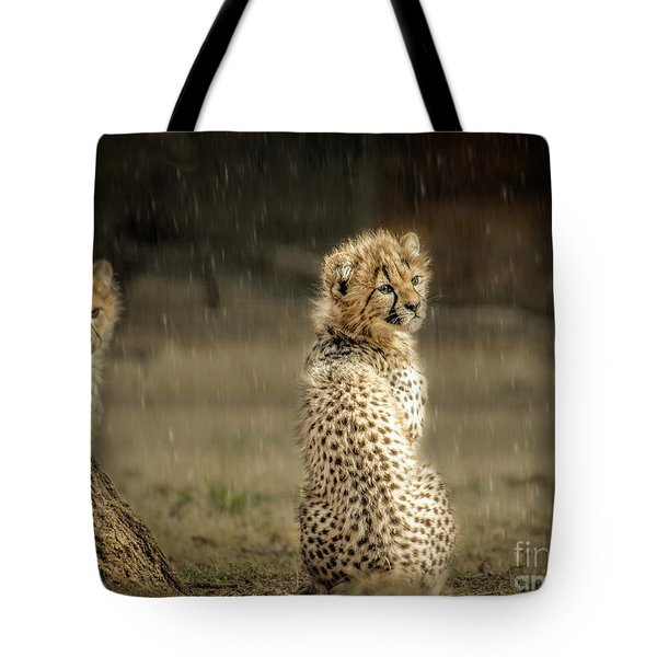 Cheetah Cubs And Rain 0168 Tote Bag