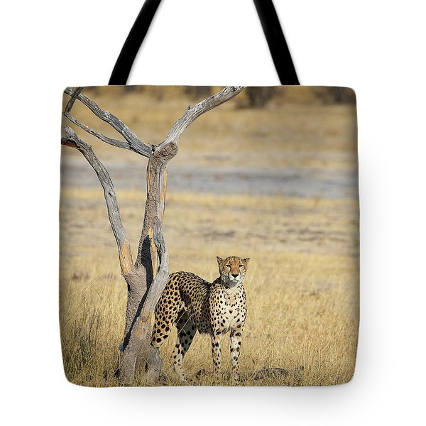 Tote Bag featuring the photograph Cheetah by John Rodrigues