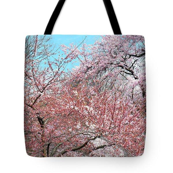 Cherry Blossom Andante Tote Bag