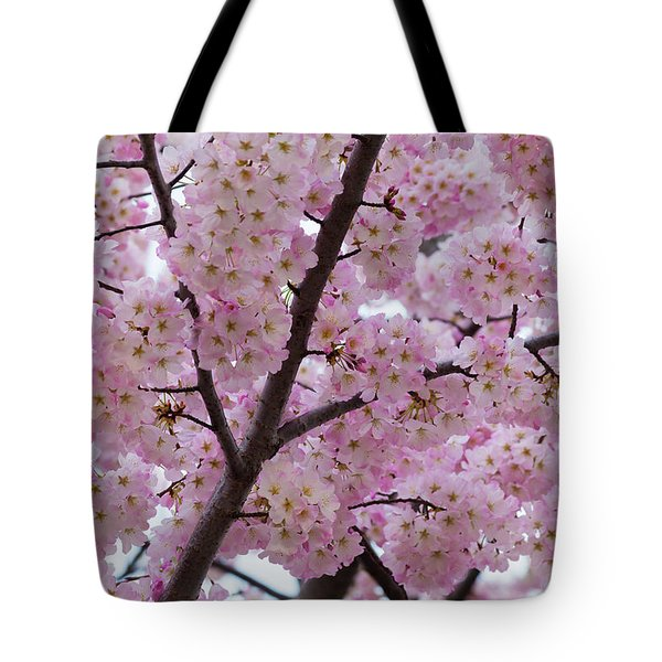Cherry Blossoms 8611 Tote Bag