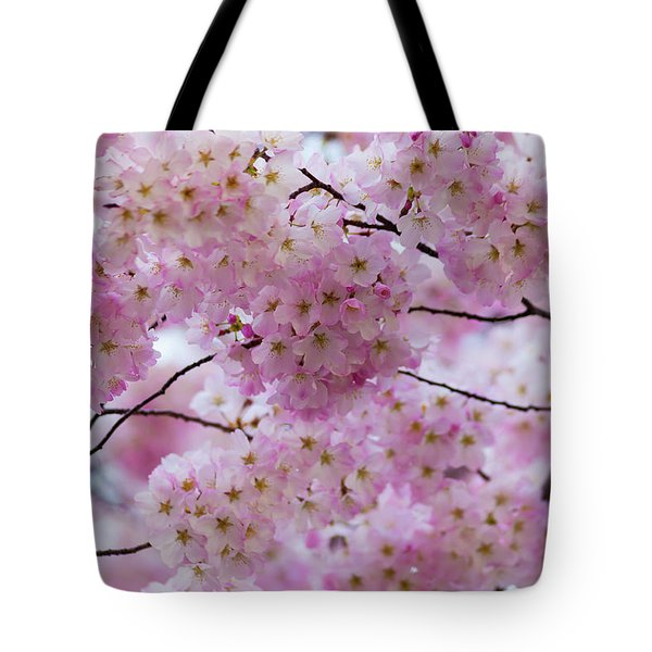 Cherry Blossoms 8625 Tote Bag