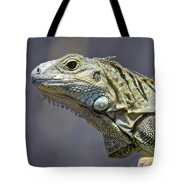 Chicken Of The Trees - Iguana Tote Bag