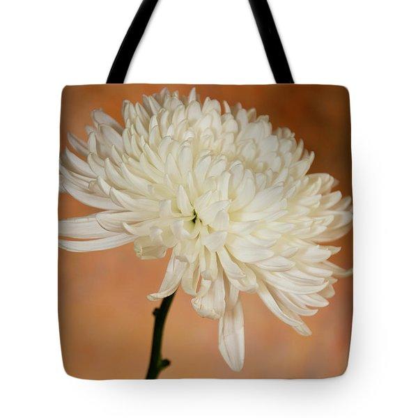 Chrysanthemum On Canvas Tote Bag