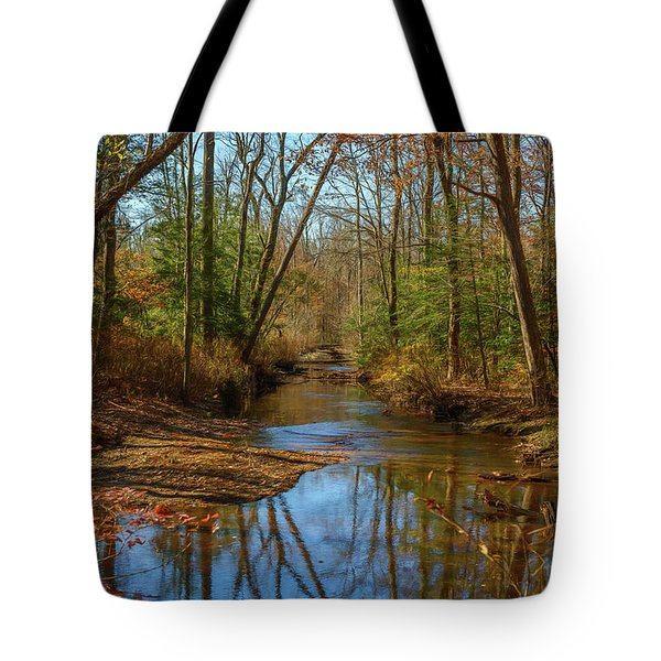Tote Bag featuring the photograph Clear Path by Cindy Lark Hartman