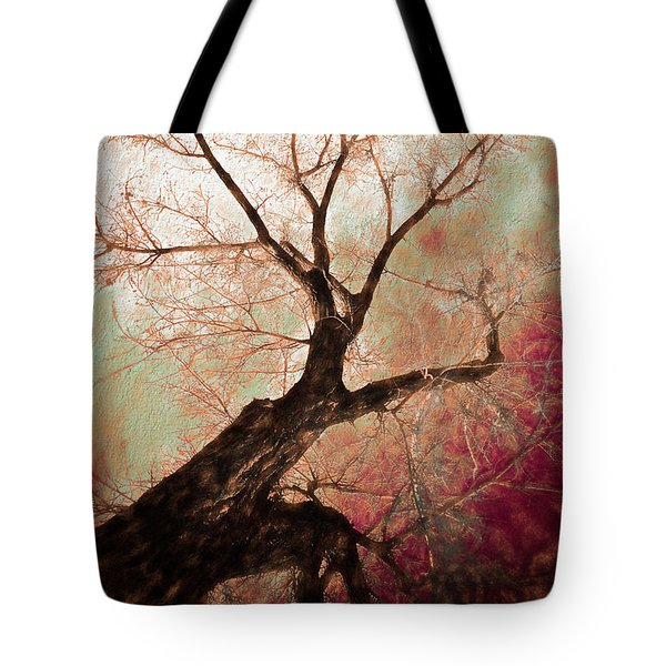 Tote Bag featuring the photograph Climbing Red Fiery by James BO Insogna