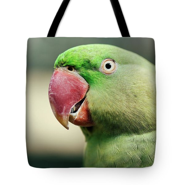Close Up Of A King Parrot Tote Bag