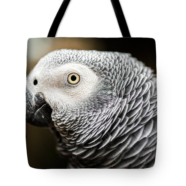 Close Up Of An African Grey Parrot Tote Bag