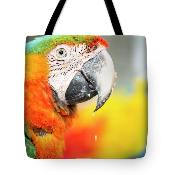 Close Up Of The Macaw Bird. Tote Bag
