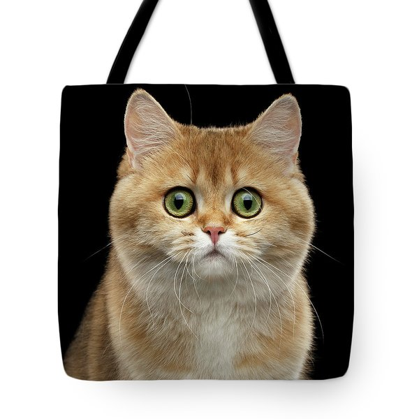 Close-up Portrait Of Golden British Cat With Green Eyes Tote Bag