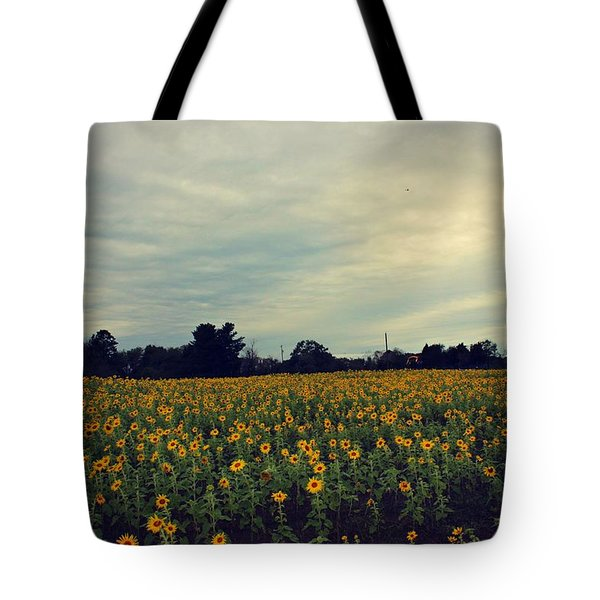 Cloudy Sunflowers Tote Bag