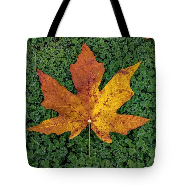 Clover Leaf Autumn Tote Bag