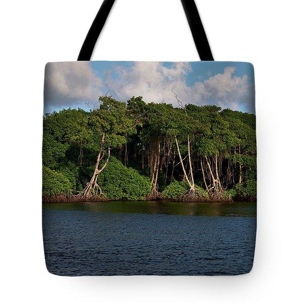 Cocal, Manzanilla Tote Bag