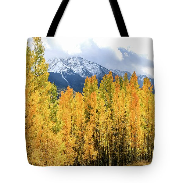 Colorado Aspens And Mountains 1 Tote Bag