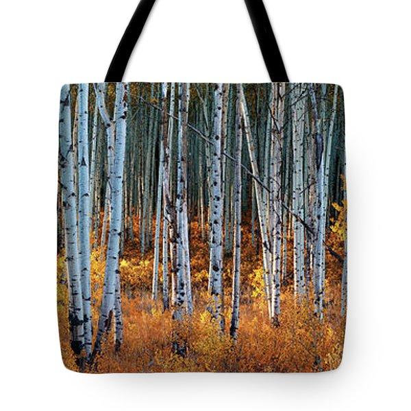 Colorado Autumn Wonder Panorama Tote Bag