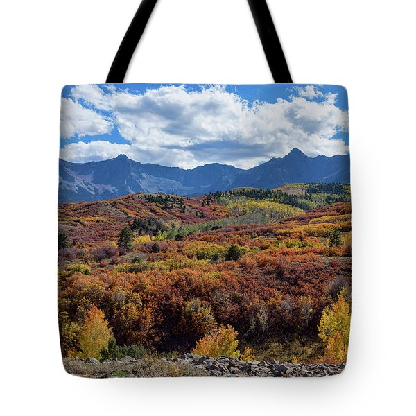 Tote Bag featuring the photograph Colorado Color Lalapalooza by James BO Insogna
