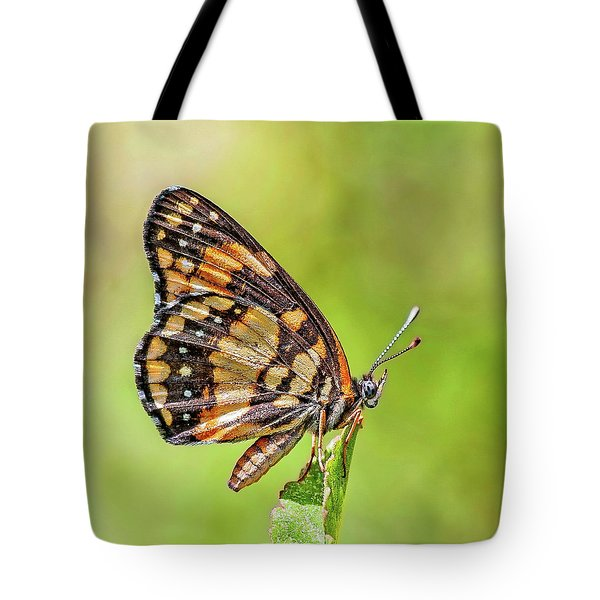 Tote Bag featuring the photograph Colorful Butterfly by Anthony Dezenzio