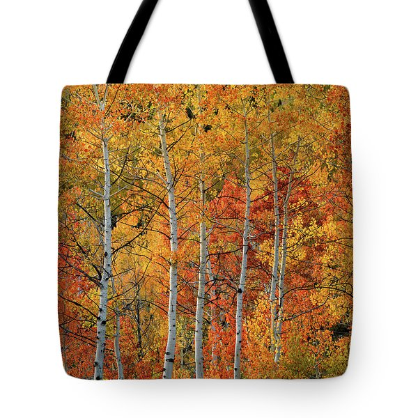 Tote Bag featuring the photograph Colorful Glow Of Autumn by Leland D Howard