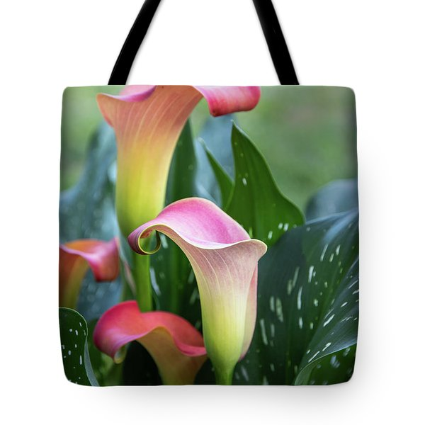 Colorful Spring Flowers Tote Bag