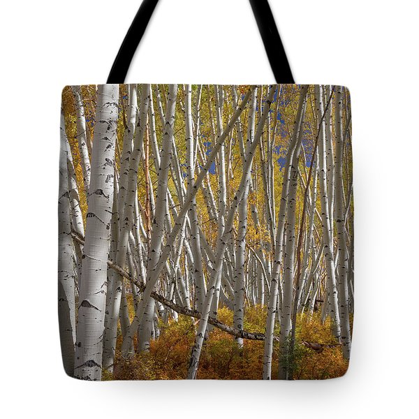 Tote Bag featuring the photograph Colorful Stick Forest by James BO Insogna