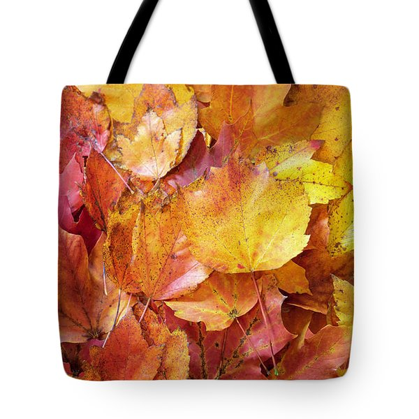 Colors Of Fall - Red To Yellow Tote Bag