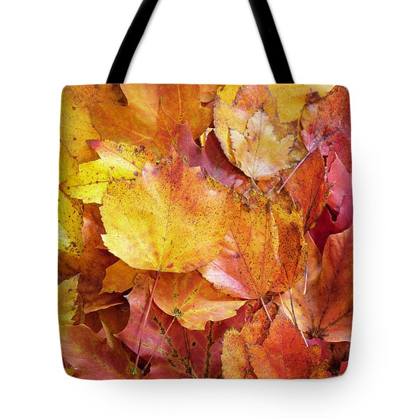 Colors Of Fall - Yellow To Red Tote Bag