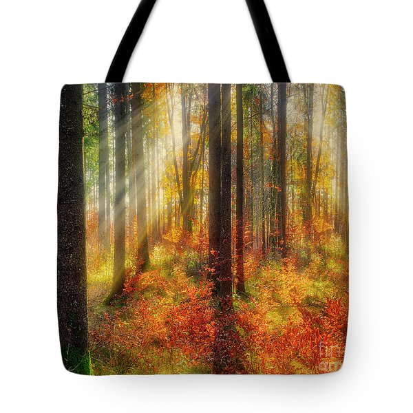 Colours Of Nature 02 Tote Bag