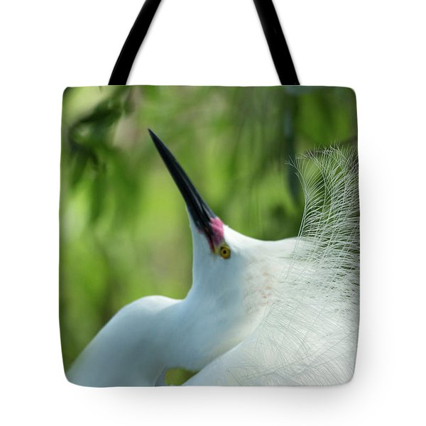 Come A Courting Tote Bag