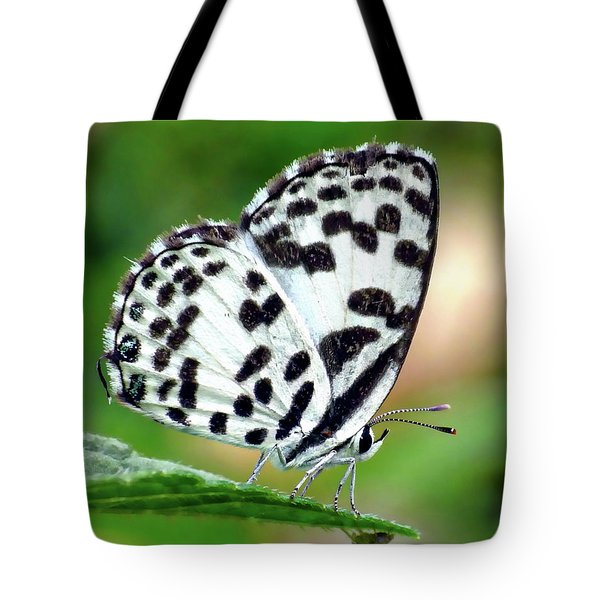 Tote Bag featuring the photograph Common Pierrot Butterfly by Anthony Dezenzio