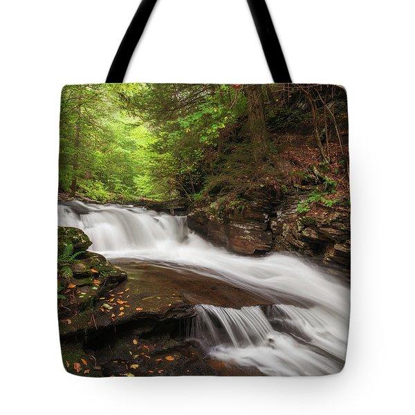 Tote Bag featuring the photograph Conestoga Falls by Sharon Seaward