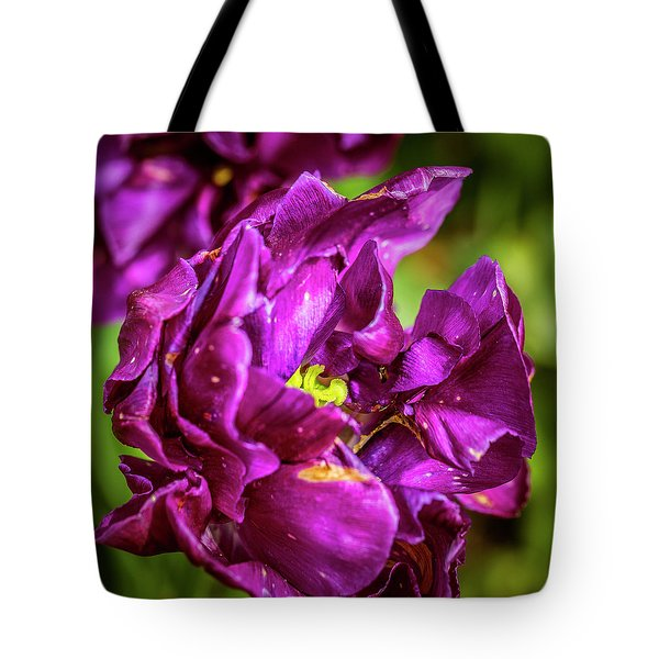 Contrasting View Tote Bag