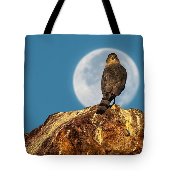 Coopers Hawk With Moon Tote Bag