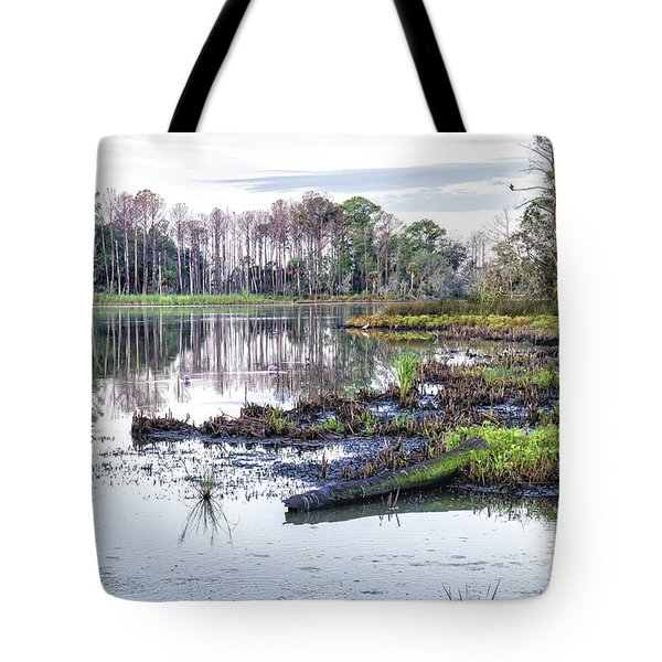 Coosaw - Early Morning Rice Field Tote Bag