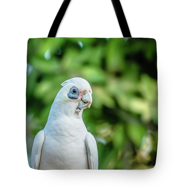 Corellas Outside During The Afternoon. Tote Bag