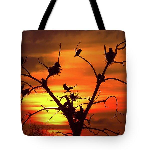 Cormorant Nest Building Time Tote Bag