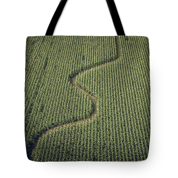 Tote Bag featuring the photograph Corn Field by Steve Stanger