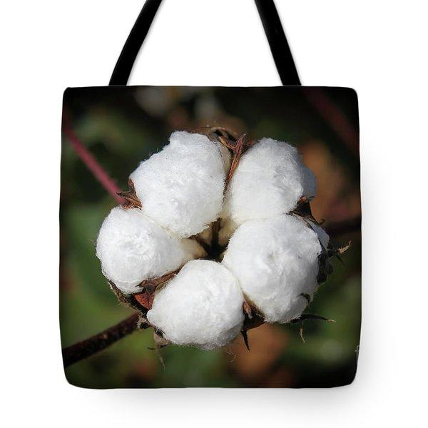 Cotton Cotton Cotton Image Art Tote Bag